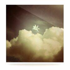 Pegasus by Richard Casillas Photographic Print Plaque