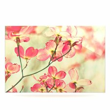 Morning Light by Sylvia Cook Photographic Print Plaque