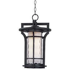 Oakville 1 Light Outdoor Hanging Lantern