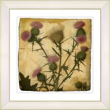 Vintage Botanical No. 38A by Zhee Singer Framed Giclee Print Fine Wall Art