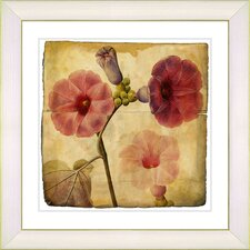 Vintage Botanical No. 17A by Zhee Singer Framed Giclee Print Fine Wall Art
