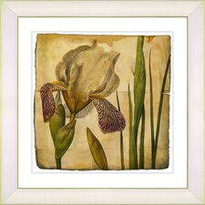 Vintage Botanical No. 42A by Zhee Singer Framed Giclee Print Fine Wall Art