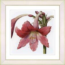 Vintage Botanical No. 01W by Zhee Singer Framed Giclee Print Fine Wall Art