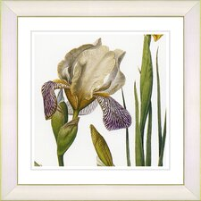 Vintage Botanical No. 42W by Zhee Singer Framed Giclee Print Fine Wall Art