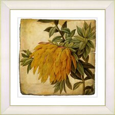 Vintage Botanical No. 44A by Zhee Singer Framed Giclee Print Fine Wall Art