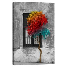 Tree in Front of Window Rainbow Pop Color Pop Canvas Art