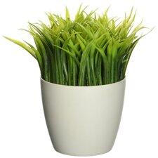 Grass Pen Stand