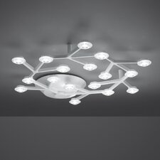Led Net Ceiling Circular Light