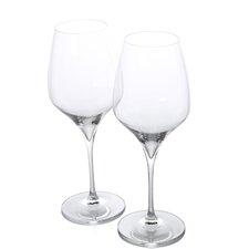 Vitis Syrah-Shiraz Red Wine Glass (Set of 2)