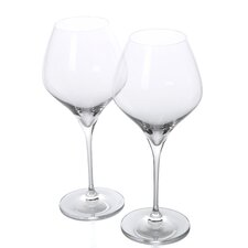 Vitis Pinot Noir Red Wine Glass (Set of 2)