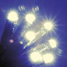 100 LED Warm White Lights