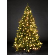 Snowtime 6.6' Green Pre-Lit Charlotte Spruce Artificial Christmas Tree with 350 Clear Lights