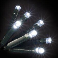 50 LED White Lights