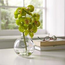 Faux Green Orchid Arrangement