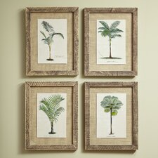 Palm Tree Framed Prints (Set of 4)