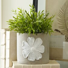 Wildflower Cement Planters (Set of 2)