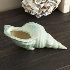 Seashell Vessel