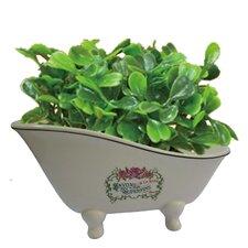 Savons Superfins Aqua Eden Decorative Mini Bathtub Soap Dish
