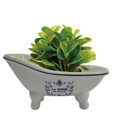 Le Savon Aqua Eden Decorative Mini Bathtub Soap Dish