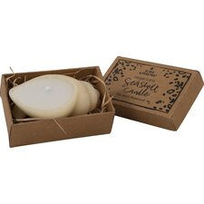 Sea Shell Novelty Candle