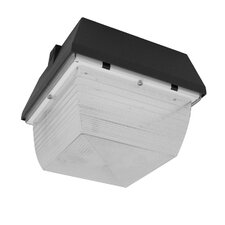 Small Canopy Light Fixture