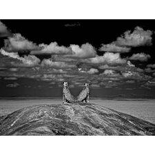 """Reflecting Cheetahs"" by Charlie Hamilton James Photographic Print"