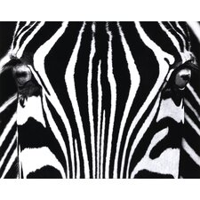 Black and White I by Rocco Sette Painting Print