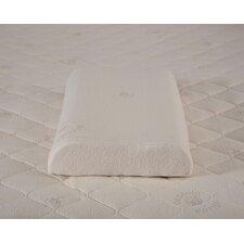 Organic Latex Queen Pillow