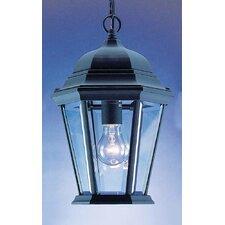 1 Light Outdoor Hanging Lantern