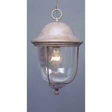 Rhodes 1 Light Outdoor Hanging Lantern