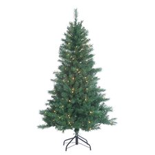 5' Colorado Spruce Christmas Tree with 200 Clear Lights with Stand