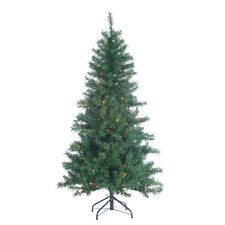 5' Colorado Spruce Christmas Tree with 200 Multi Lights with Stand