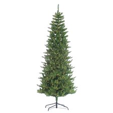 HB 9' Narrow Augusta Pine Christmas Tree with 700 Clear Lights with Stand