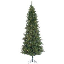 12' Green Fir Artificial Christmas Tree with 1250 Incandescent Clear Lights