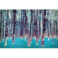Lucid Birch Art on Canvas