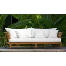 Limited Daybed with Cushion