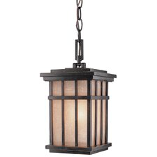 Freeport 1 Light Outdoor Hanging Lantern