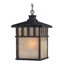 Barton 1 Light Outdoor Hanging Lantern