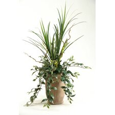 Mixture of Mango Grass and Japanese Hanging Bamboo Desk Top Plant in Vase