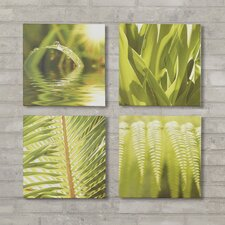 Rodriguez 4 Piece Photographic Print on Canvas Set