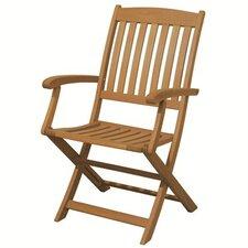 Spontaneity Folding Arm Chair (Set of 2)