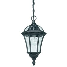 Lora 1 Light Outdoor Hanging Lantern