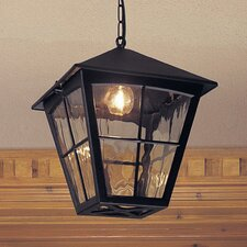 Edinburgh 1 Light Outdoor Hanging Lantern