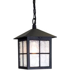 Winchester 1 Light Outdoor Hanging Lantern