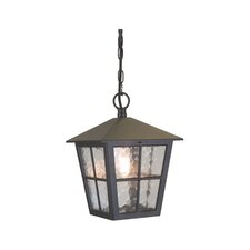 Canterbury 1 Light Outdoor Hanging Lantern