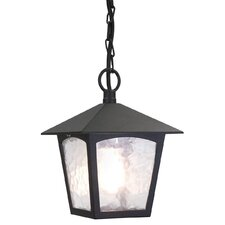 York 1 Light Outdoor Hanging Lantern