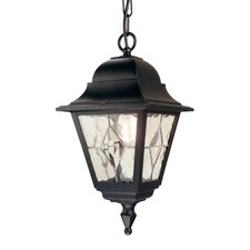 Norfolk 1 Light Outdoor Hanging Lantern