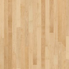 "Nantucket 3-1/4"" Solid Maple Hardwood Flooring in Prospect Hill"