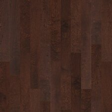 "Brooksville 5"" Engineered Birch Hardwood Flooring in Conway"