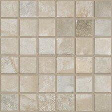 "Metropolitan 11.75"" x 11.75"" Porcelain Field Tile in Silver Lake"